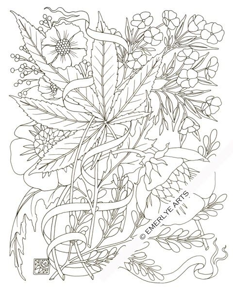 """hemp & phlox"" an adult coloring pagecynthia emerlye"