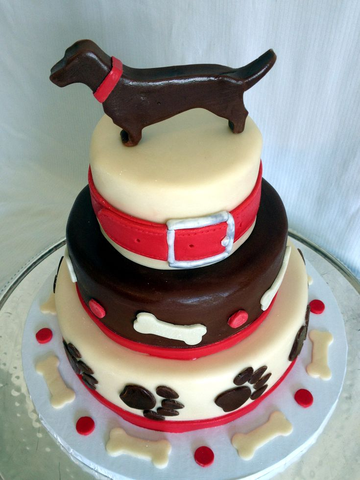 Birthday Cakes For Dogs Fomanda Gasa