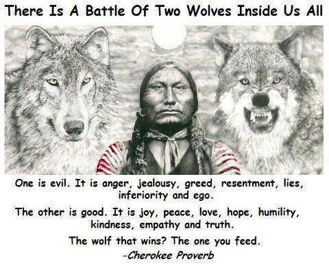 Bildresultat för feed the wolf