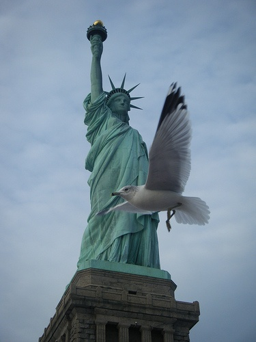 71 best images about statue of liberty photography on ...