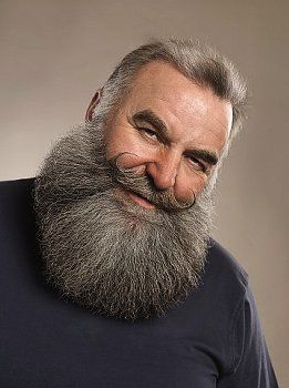 38 Best Images About Beards On Pinterest