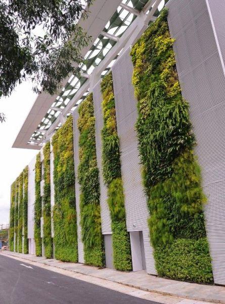 vertical garden institute 25+ best ideas about Living walls on Pinterest | Vertical