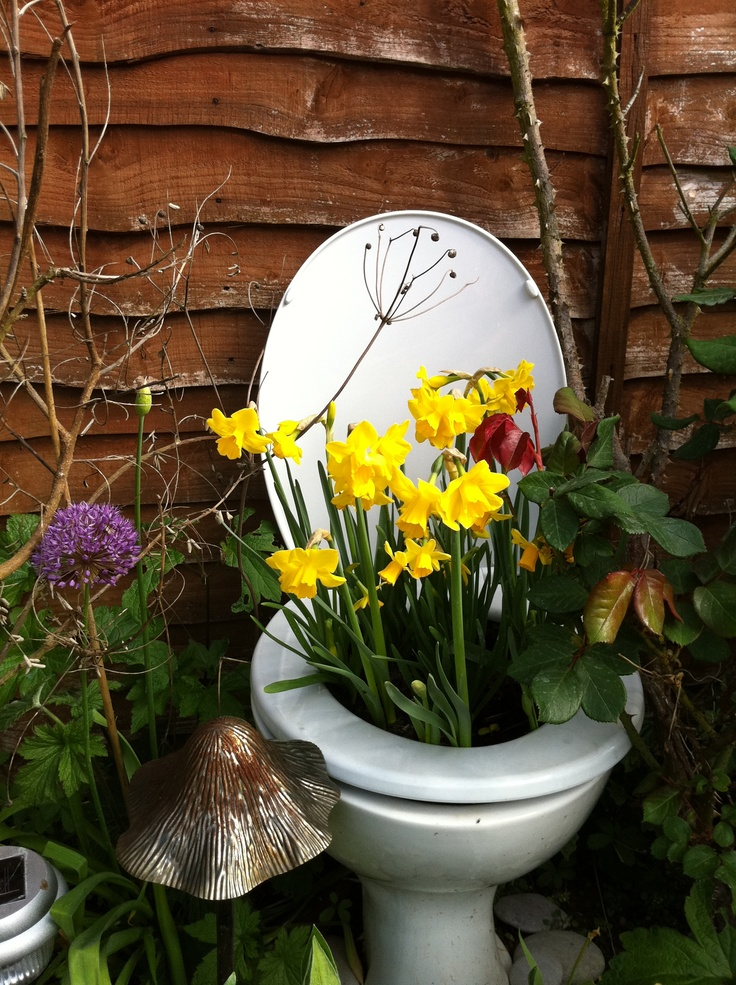 Toilet Planter Buy One At The ReStore 285 Nash Rd N DIY Pinterest Toilets Planters