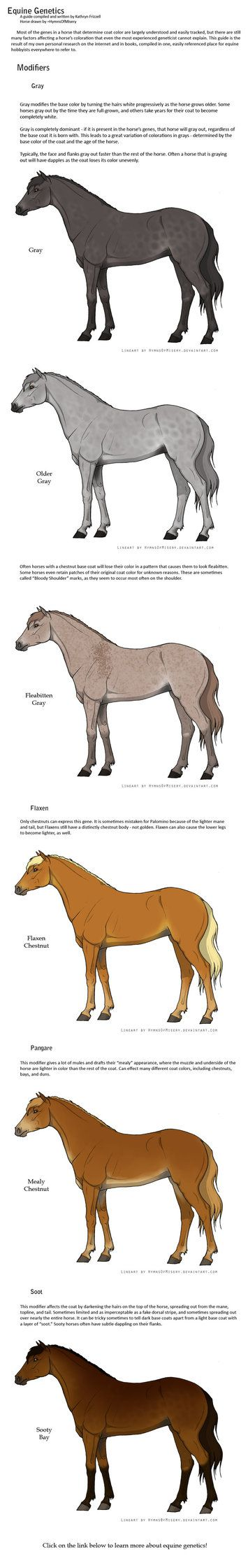 The best images about Horse u cowgirl stuff on Pinterest