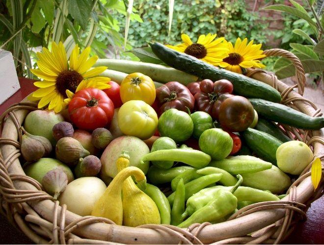 O cesto armazena alguns legumes e frutas colhidos na horta orgânica mantida pela família Dervaes no quintal de sua casa em Pasadena, na Califórnia (EUA). O projeto Urban Homestead® produz por ano 2.700 quilos de alimentos frescos em um terreno com 362 m²
