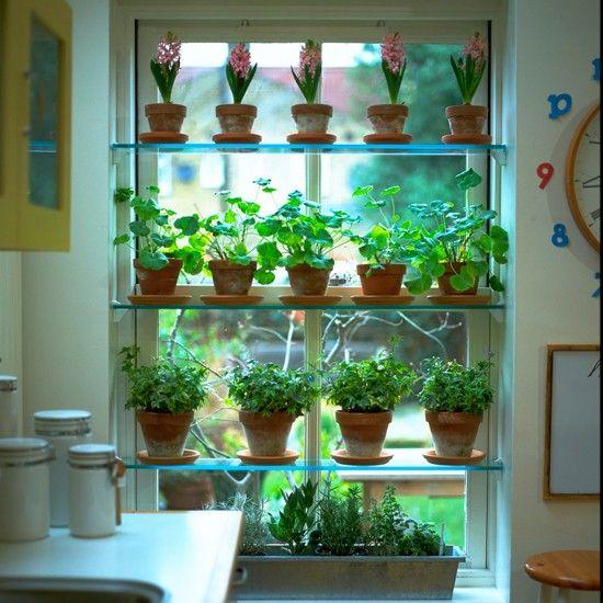 window indoor garden pods plants in kitchen | Gardens, Herbs garden and Indoor