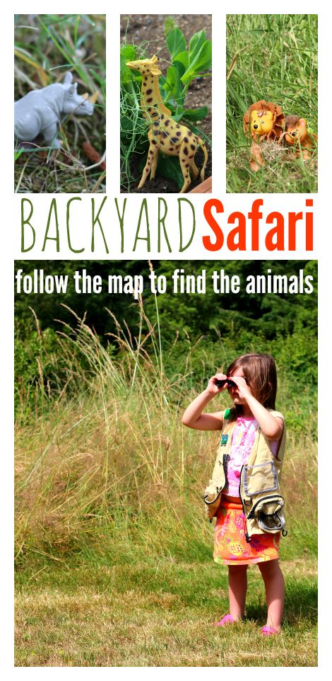 Backyard safari and map activity! Fun for Apologia Aoology 3, Apologia Land Animals for #homeschool scienee, animal