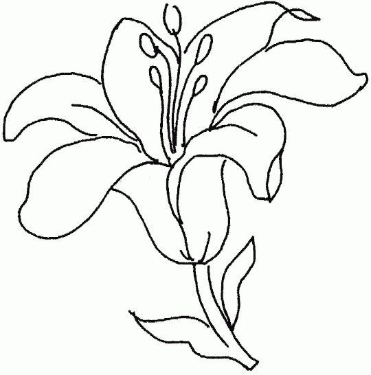 Die 25 Besten Ideen Zu Blumenmalvorlagen Auf Pinterest