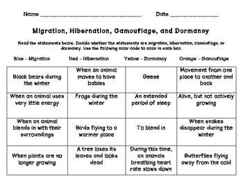 Migration Hibernation Camouflage Dormancy