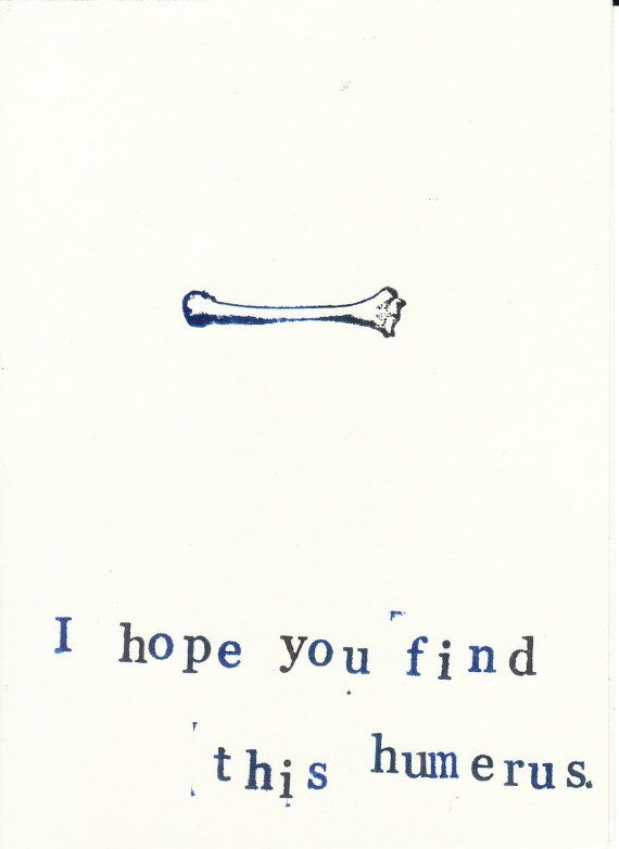 Find This Humerus Card Funny Skeleton Anatomy Science