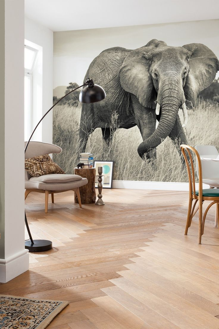 Living Room Elephant Decor