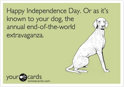 Hahaha, all those poor pups!