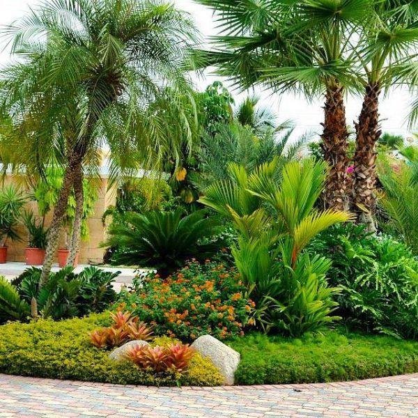 tropical garden design 1999 best images about tropical gardens on Pinterest