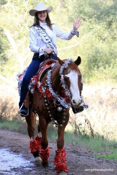 1000 Ideas About Horse Costumes On Pinterest Costumes