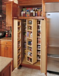 I want to tear out the traditional pantry and put in one of these when we do the
