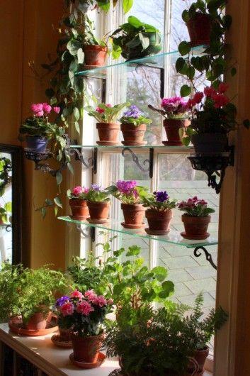 window indoor garden pods Best 25+ Indoor window garden ideas on Pinterest