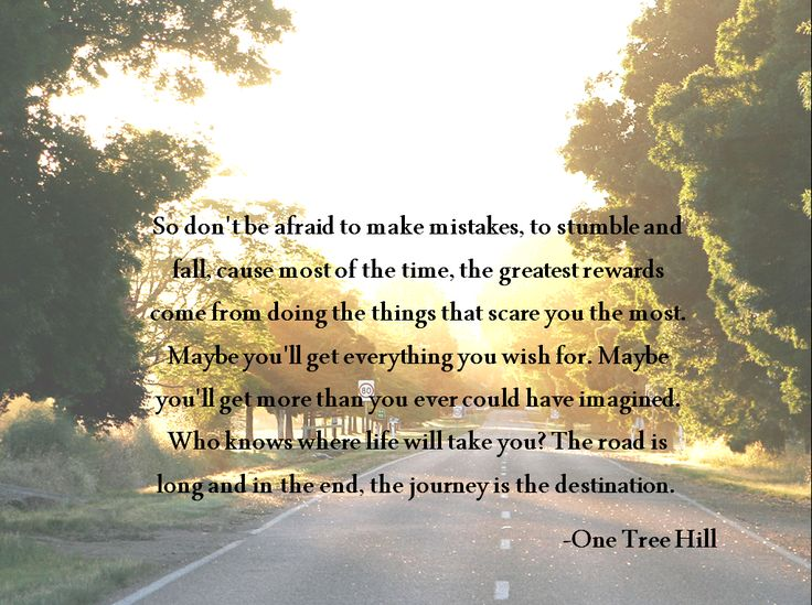 About Life Most Quotes Important Tree And Are Life Picture Heres Things
