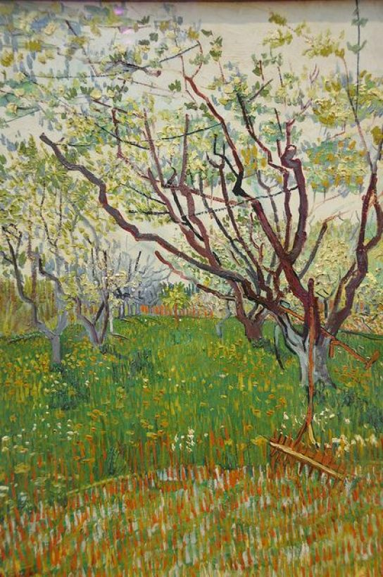 Vincent van Gogh - The Flowering Orchard, 1888: