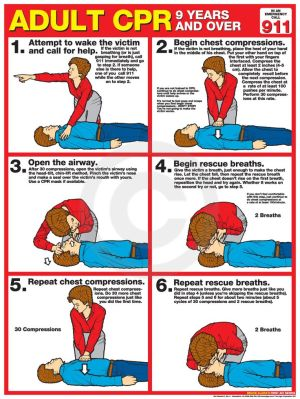 Adult CPR Poster  USA Labor Law Posters | CPR | Pinterest | Labor, Products and Law