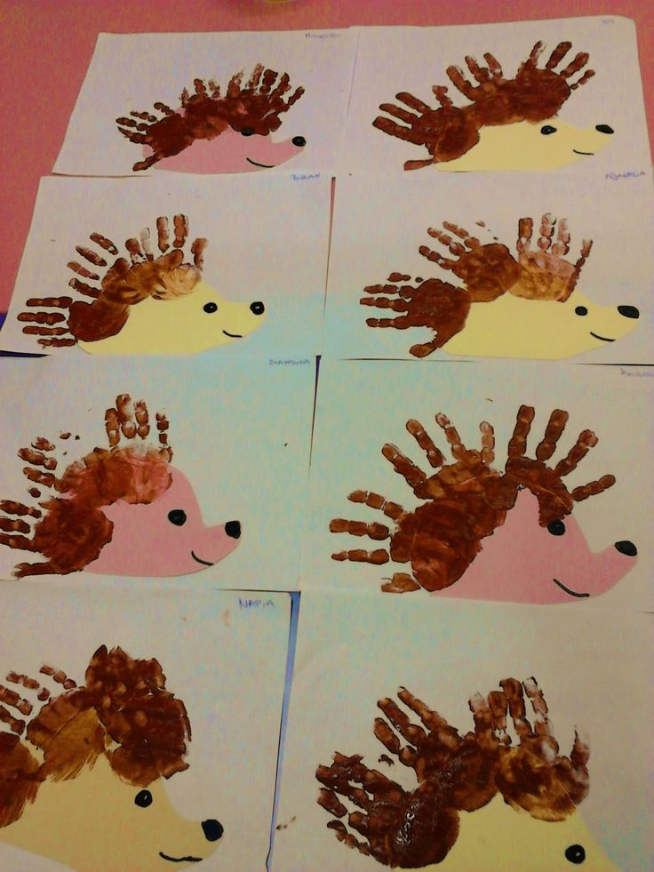 Best 25 Hedgehog Craft Ideas On Pinterest John Lewis