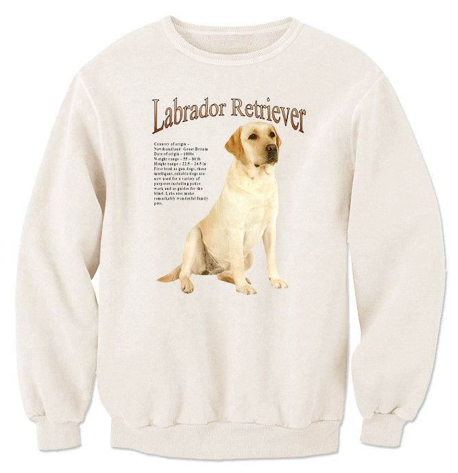 17 Best Ideas About Yellow Labrador Retrievers On