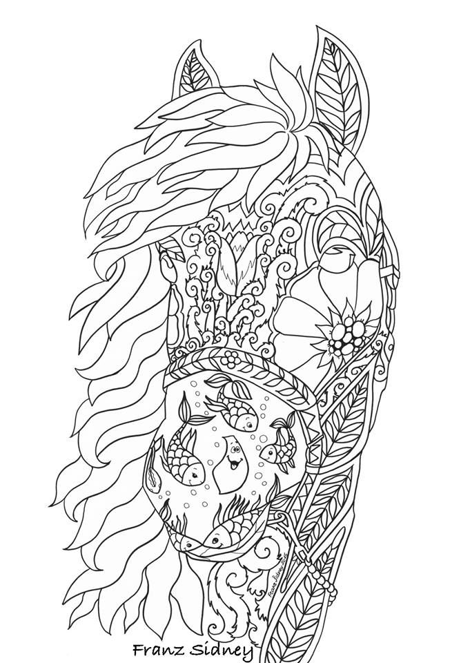 8 best images about coloring on pinterest  adult