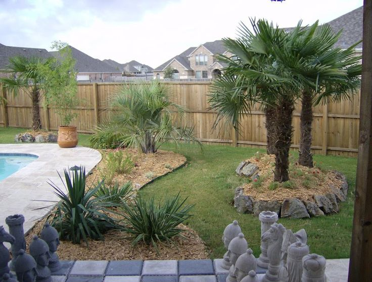 front yard ideas for ranch style homes az | Luxury Home ... on Palm Tree Backyard Ideas id=99458