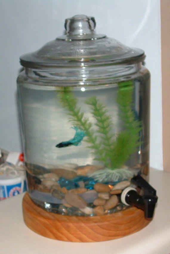 Betta Fish Tanks Diy Diy Betta Fish Tanks For Pinterest 2017