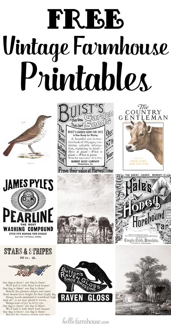 1018 best images about printables on pinterest on farmhouse kitchen quotes free printable id=86580