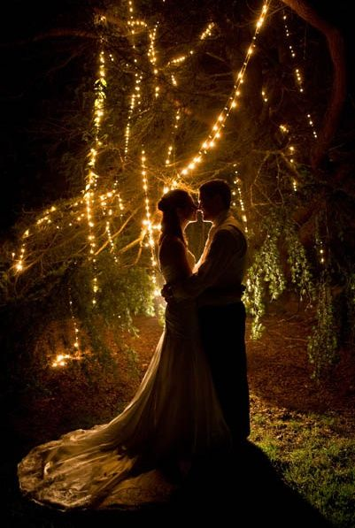 Fountaindale Grand Manor wedding.  Insane twinkly lights.  Photo by Vibrant Photography.