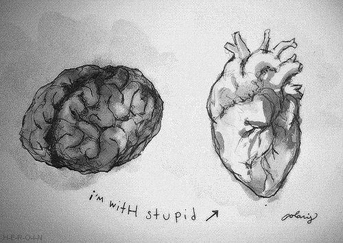 Im with stupid.
