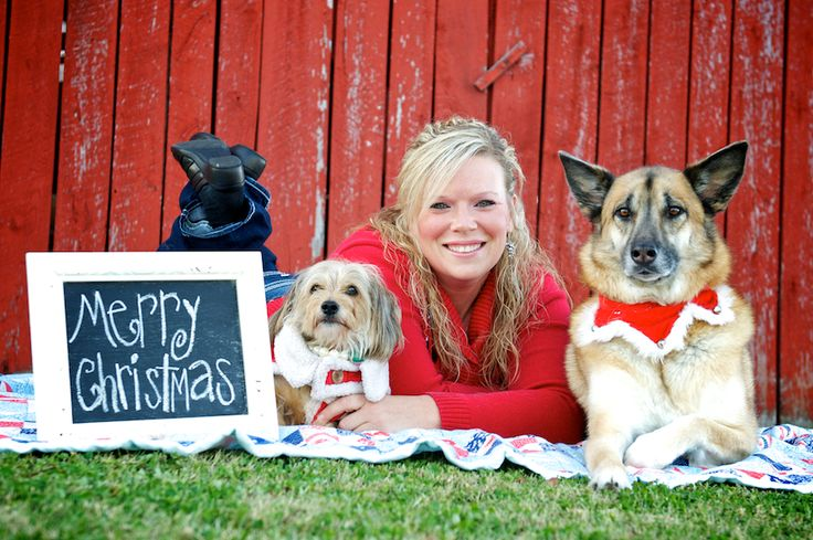25 Best Ideas About Family Pet Photography On Pinterest