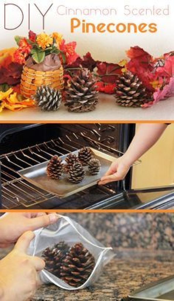 Cinnamon scented pinecones are the definition of fall decor! It's so easy to make it yourself and it makes your entire home smell amazing.: