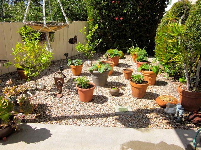 17 Best images about No grass garden ideas on Pinterest ... on Backyard Landscaping Ideas No Grass  id=24411