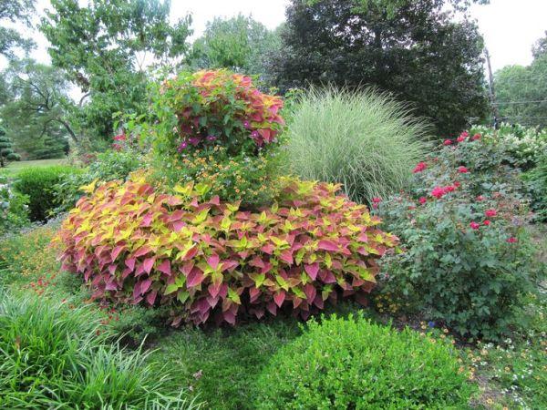 beautiful flower gardens pinterest Container | Gardens - Flowers | Pinterest | Gardens