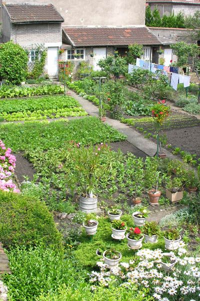 167 best images about kitchen gardens on pinterest gardens raised beds and landscaping on kitchen garden id=78511