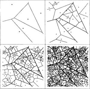 25 best ideas about Voronoi diagram on Pinterest