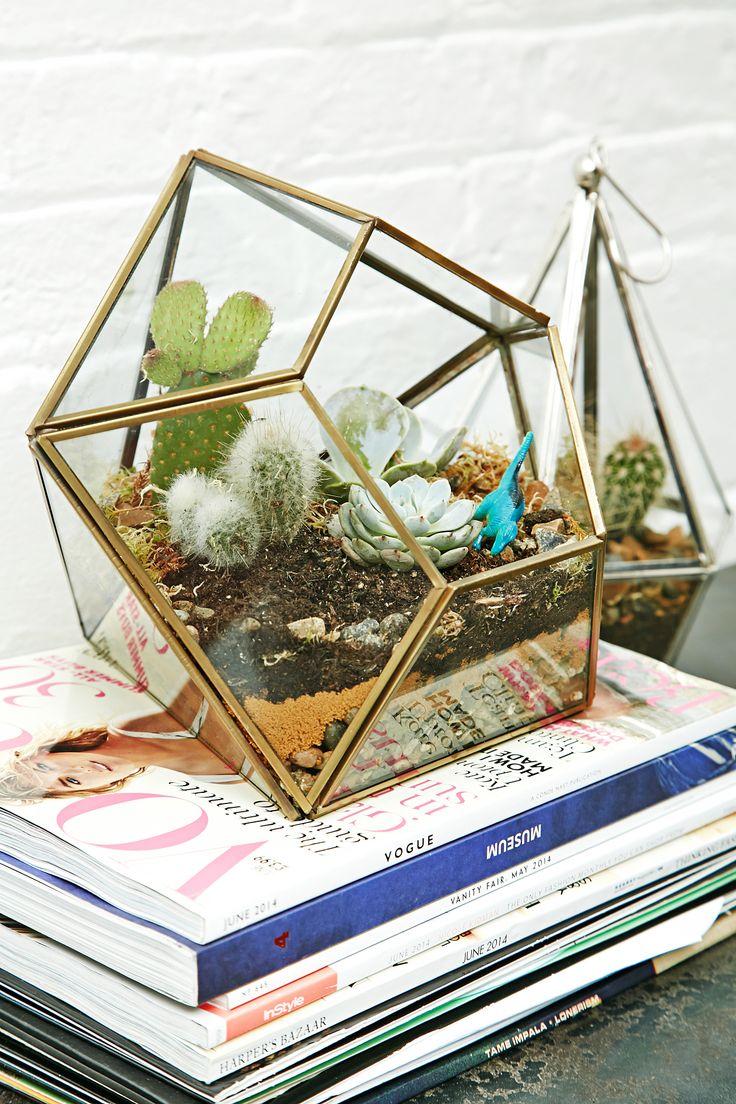 terrarium voor planten