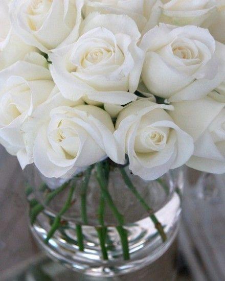 Architecture Decor Flowers   AllThingsWhite   RosamariaGFrangini   White Roses in a Vase, La Maison des Ro