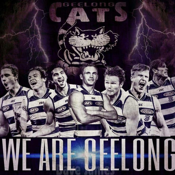 88 Best Images About Geelong The Greatest Team Of All