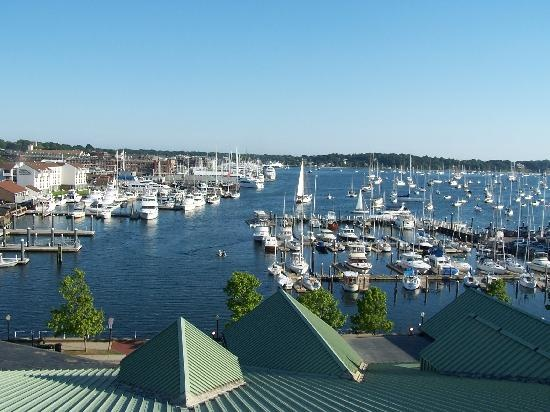 17 Best Images About Everything Newport Harbor On