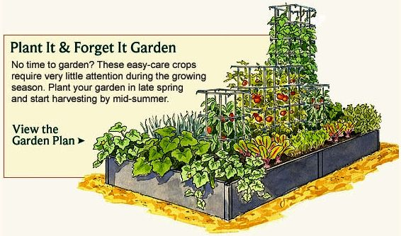 small home garden layout Vegetable Garden Planner - Layout, Design, Plans for Small