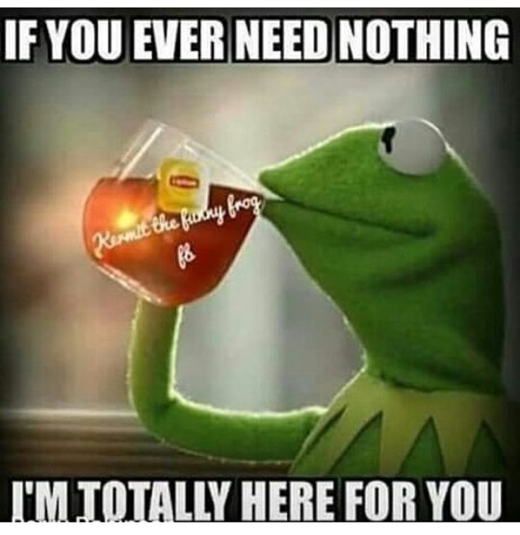 Kermit Frog Sipping Tea Meme