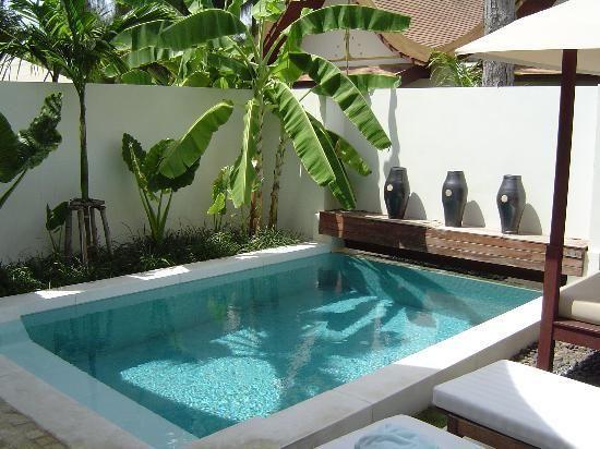 SALA Samui Resort And Spa: Private Plunge Pool In Sala