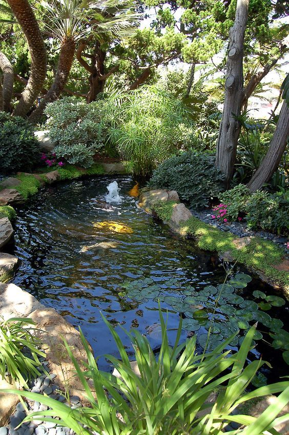 437 best images about Small Garden Ponds on Pinterest ... on Small Backyard Pond  id=50603