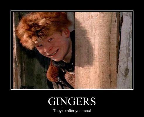 Funnyhairjokes Ginger Gingers Ginger Pride Ginger