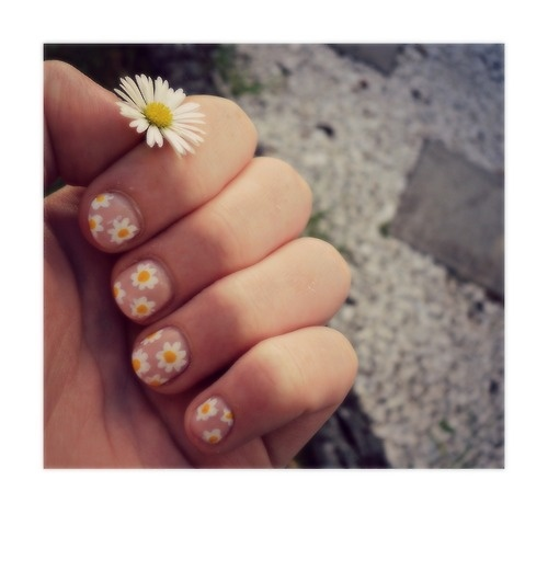 Ox eye daisy nail design: three color colour art: soft pink (or beige) base, whi