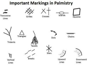 Meanings and Significance of Markings and Symbols in