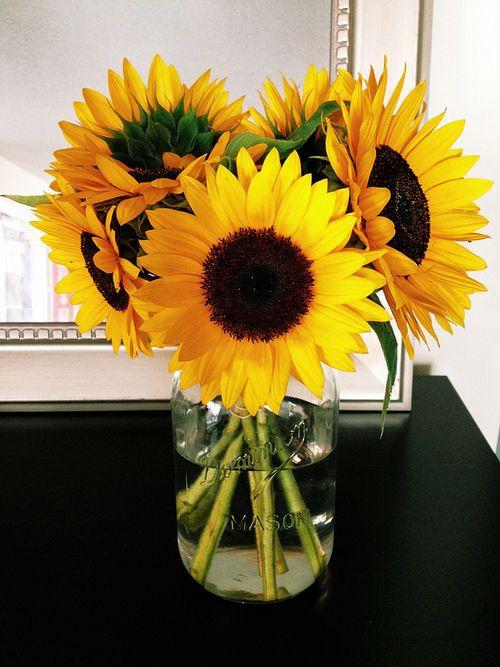 25 Best Ideas About Sunflower Home Decor On Pinterest