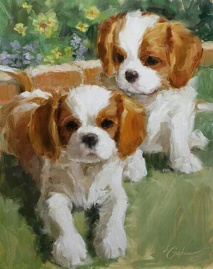 335 Best Images About Cavalier King Charles Spaniel Art On